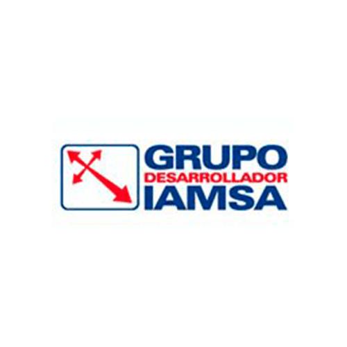 Grupo IAMSA